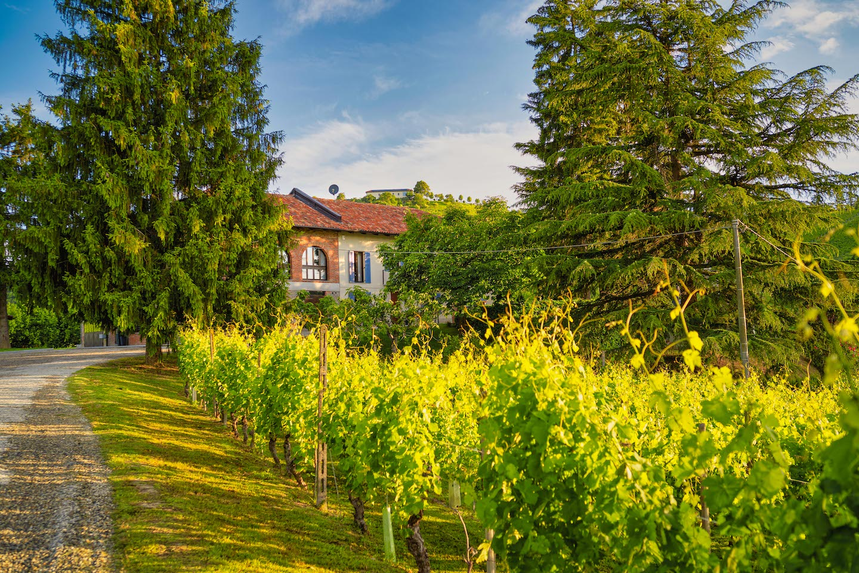 Cascina Bo - Urlaub im Piemont